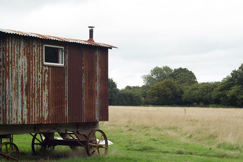 Aggie shepherd's hut in field