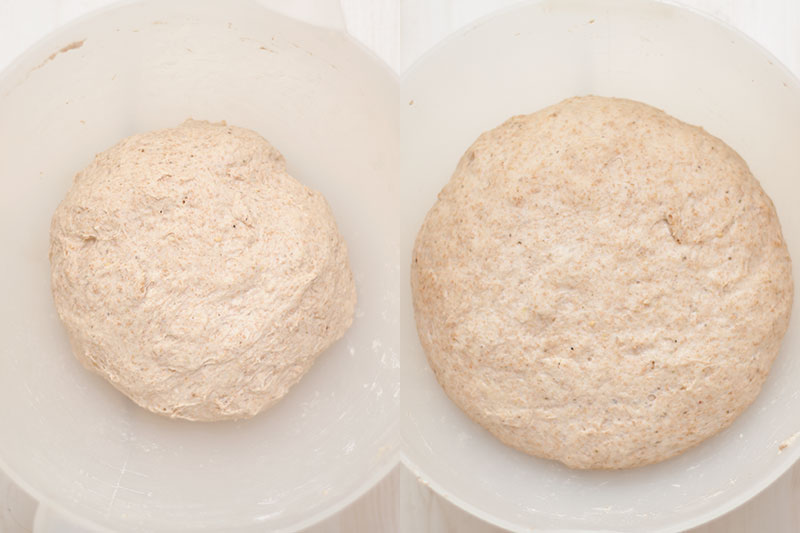 Za'atar spelt dough before and after rising
