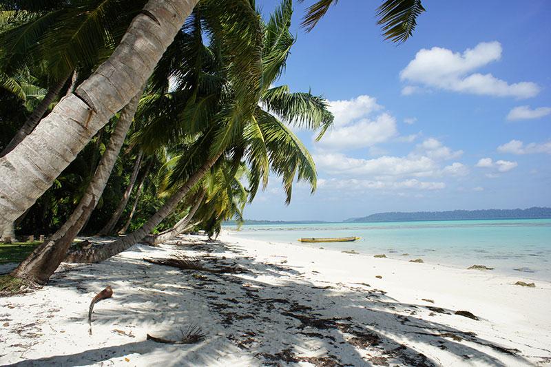 Spelt banana bread with tahini and honey dairy and wheat free havelock island, andaman islands