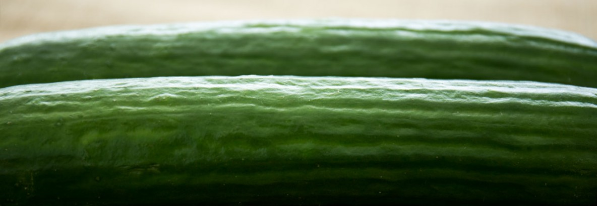Close up shot of a pair of cucumbers