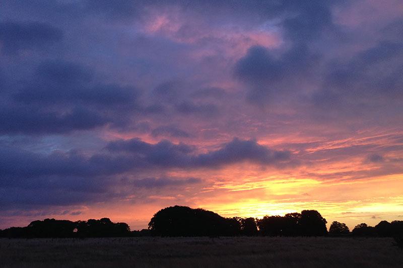 Wanstead flats sunrise